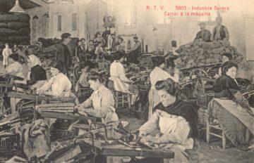 Dones del suro